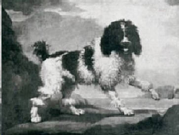 Traditional Poodle Painting in 1600s